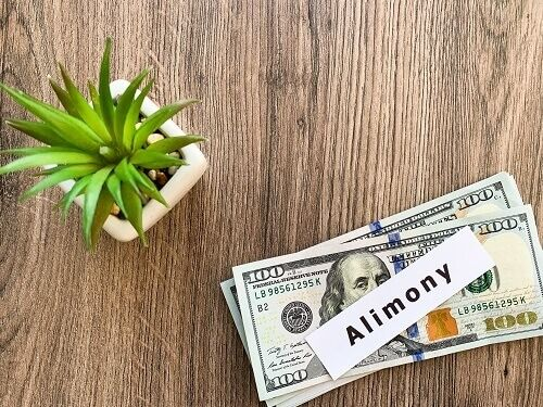 "Stack of 100 dollar bills with a note on top that says ""alimony"" and a succulent plant near by."